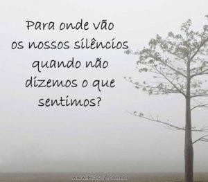 Nossos silêncios