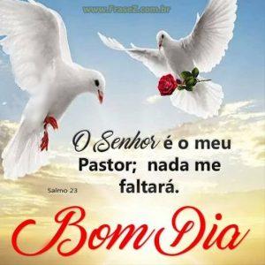 O senhor é o meu pastor; nada me faltará.