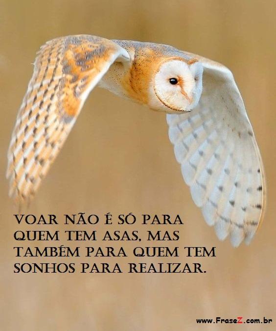 Voar não é só para quem tem asas