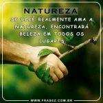 Ame a natureza!