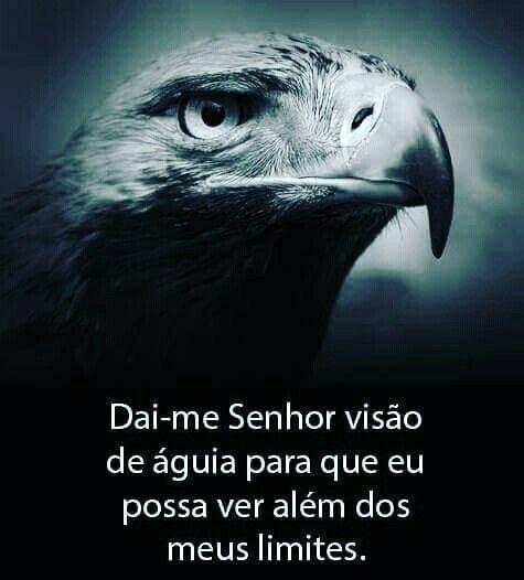 Dai-me senhor visão de águia