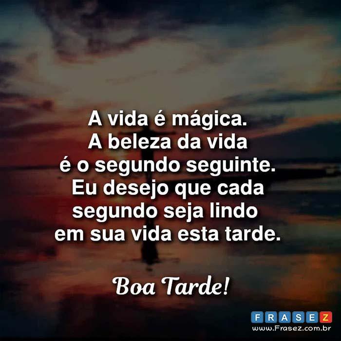 A vida é mágica