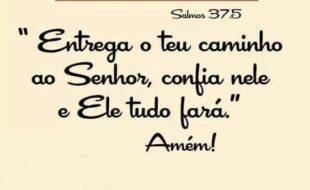 Salmo do dia: Salmo 37.5