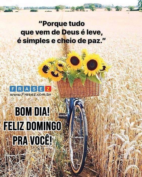 Bom dia! Feliz domingo pra você!