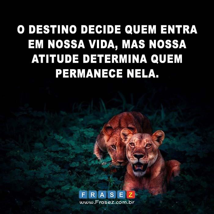 O destino decide quem entra em nossa vida, mas nossa atitude determina quem permanece nela.